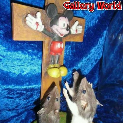 jesus-mouse